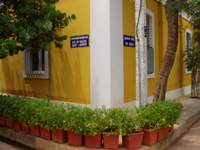 French houses in Pondicherry
